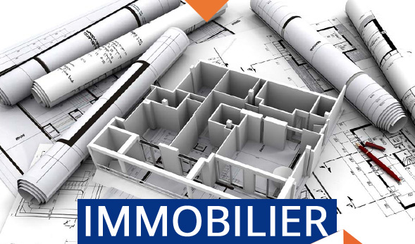 controle immobilier